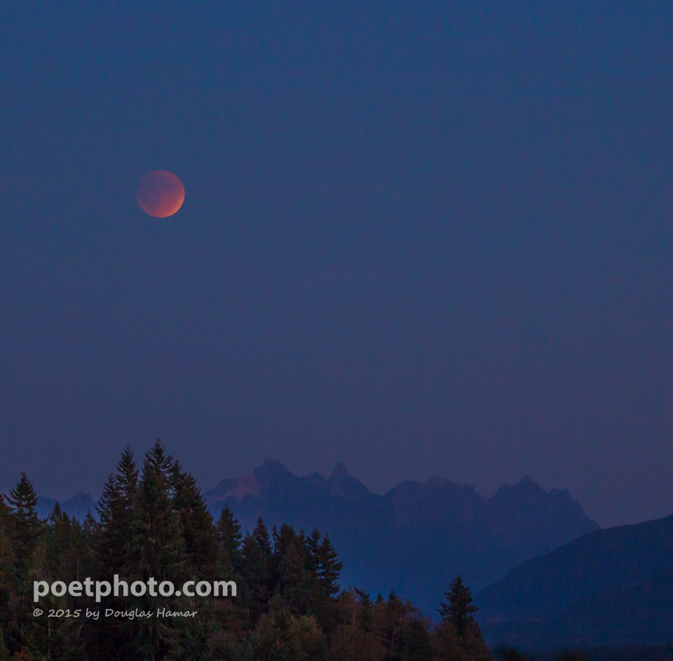 Blood moon-